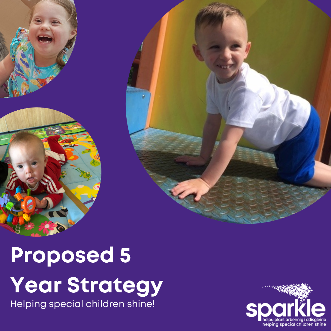 Sparkle's Five Year Strategy